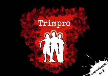 NdP-2BTRIMPRO